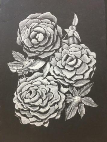 Linnea Sullivan – Flowers